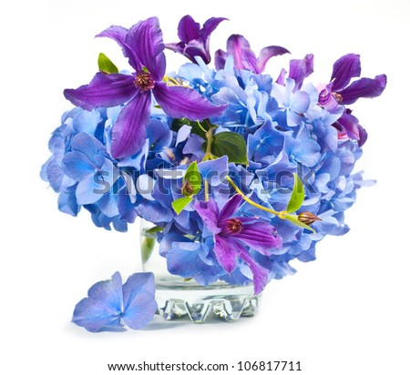 Beautiful bouquet of hydrangeas  and Clematis with glass vase on white isolated background