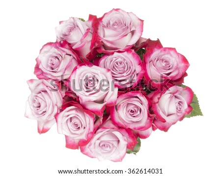 beautiful bouquet of pink roses with dark edges of the petals on a white background isolated - stock photo