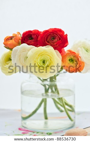 beautiful bouquet of ranunculus into a vase