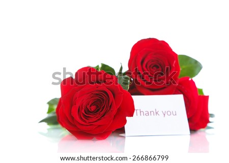 beautiful bouquet of red roses on a white background - stock photo