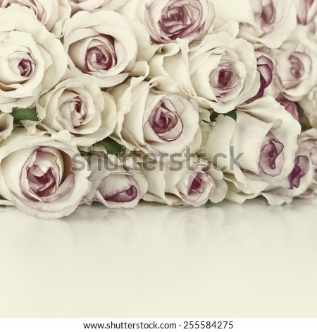 Beautiful Bouquet of Roses Flowers on Background - stock photo