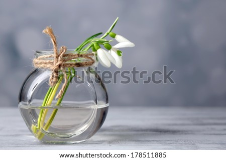 Beautiful bouquet of snowdrops in vase on light background - stock photo
