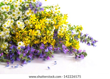 beautiful bouquet of summer flowers on a white background