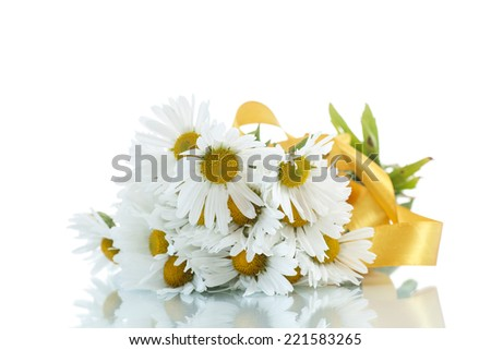 beautiful bouquet of white daisies on a white background