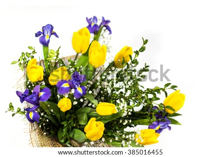 Beautiful bouquet of yellow tulips and irises isolated on white. Background for greeting card - stock photo