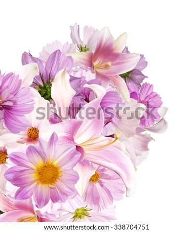 Beautiful bouquet pink flowers garden on white background isolated
