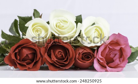 beautiful bouquet roses  on white background - stock photo