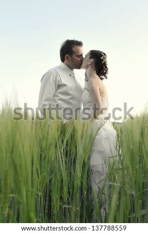 Beautiful bride and groom standing in grass and kissing. Wedding couple fashion shoot. - stock photo