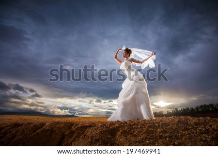 Beautiful bride at wedding dress and veil posting outdoors. Newlywed woman. Woman in wedding dress at the cliff with dark sky in twilight.Girl in bridal dress on nature. happy wedding. - stock photo