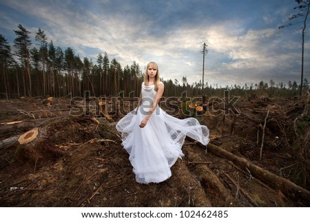 beautiful bride in the forest - stock photo