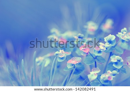 Beautiful bright background with delicate flowers. Spring floral background. - stock photo