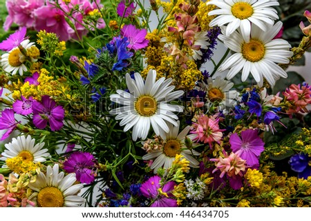 Beautiful bright floral background with colorful bouquet of different wildflowers - stock photo