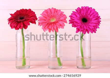 Beautiful bright gerberas in glass vases on wooden background - stock photo