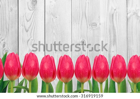 Beautiful bright tulips on wooden background - stock photo