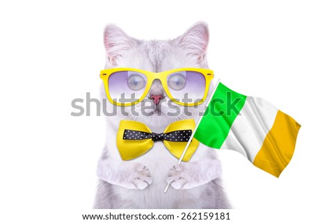 Beautiful British cat with the flag of Ireland. Language School. Flags of the world. Flags of countries - stock photo