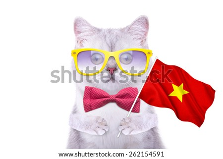 Beautiful British cat with the flag of Vietnam. Language School. Flags of the world. Flags of countries - stock photo