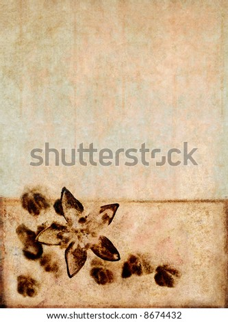 beautiful brown background image with interesting texture and floral elements with plenty of space for text - stock photo