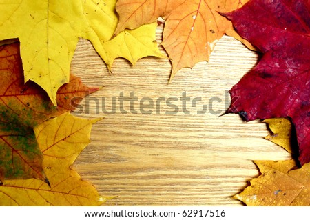beautiful brown board with autumnal leaves - stock photo