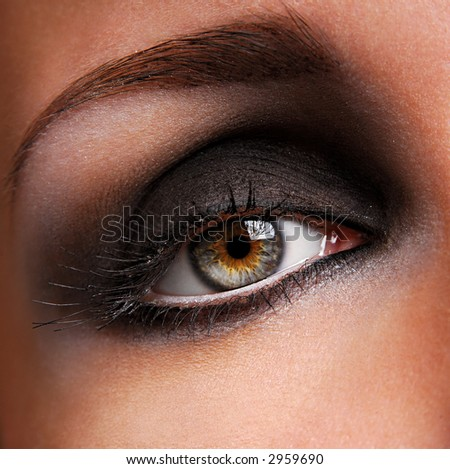 beautiful brown make up of female eye - stock photo