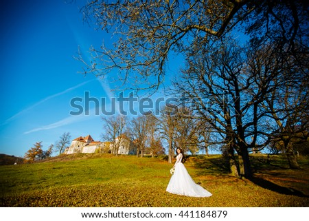 Beautiful brunette bride in a white dress with a bouquet poses outdoor - stock photo