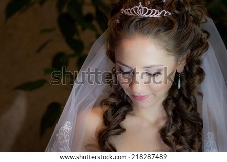 beautiful brunette bride with crown in her hair portrait - stock photo