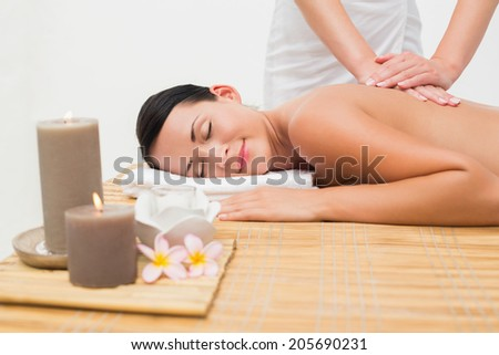 Beautiful brunette enjoying a back massage in the health spa - stock photo