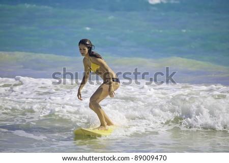 beautiful brunette in bikini surfing at Kailua Beach, Hawaii - stock photo