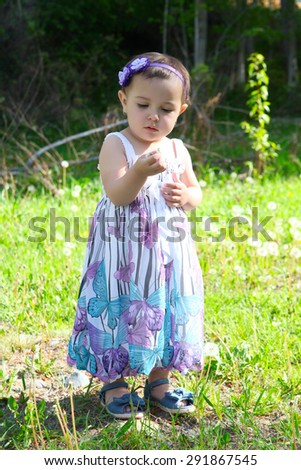 Beautiful brunette toddler outside in the field - stock photo