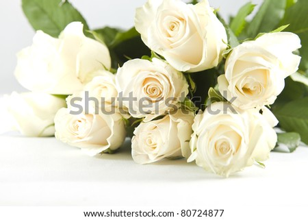 Beautiful bunch of white rose on the white background