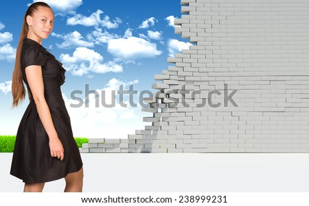 Beautiful businesswoman smiling and looking at camera. Dilapidated brick wall, green meadow and sky as backdrop. Business concept - stock photo
