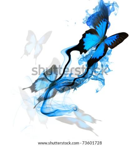 Beautiful butterfly design - stock photo