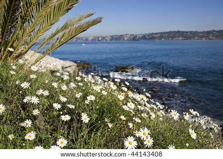 Beautiful California coastline in La Jolla with the cliffs in the background - stock photo