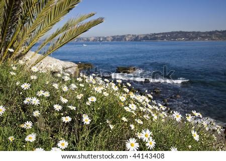 Beautiful California coastline in La Jolla with the cliffs in the background - stock photo