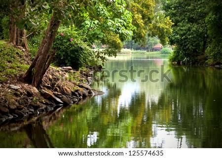 Beautiful calm river in the tropics - stock photo