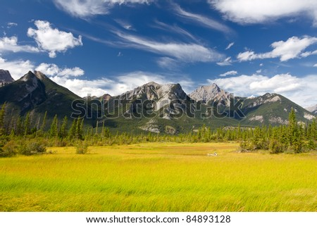 Beautiful Canadian Landscape: Swamp, Rocky Mountains and Cloudy Sky. Photo is taken in Jasper National Park, Alberta, Canada - stock photo