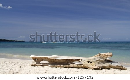 Beautiful caribbean beach - stock photo