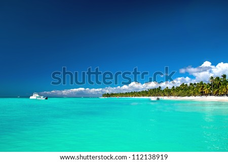 Beautiful caribbean beach on Saona island - stock photo