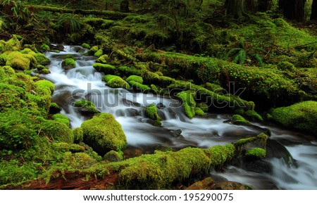 Beautiful cascade waterfall in Sol Duc Falls Trail, Olympic National Park  - stock photo