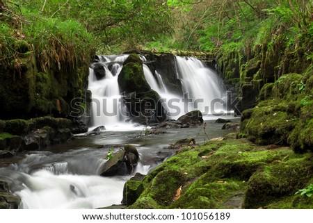 Beautiful cascades of Clare Glens, Co. Limerick, Ireland - stock photo