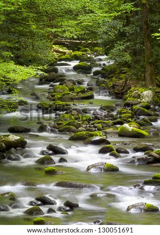 Beautiful cascading stream with mossy rocks in the Great Smoky Mountains - stock photo
