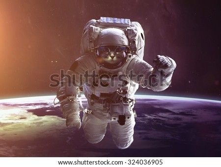 Beautiful cat in outer space. Elements of this image furnished by NASA. - stock photo