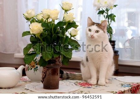 Beautiful cat sitting on the table near to vase with the white roses - stock photo