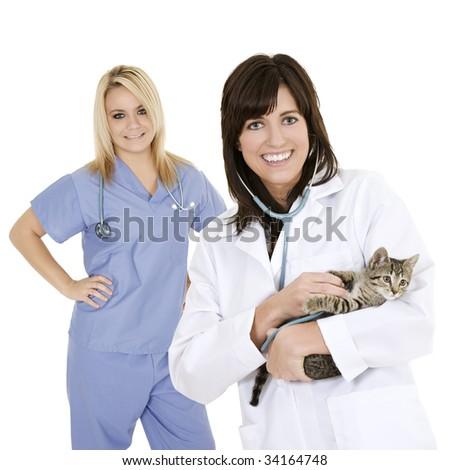 Beautiful Caucasian woman Veterinarian examining a kitten - stock photo