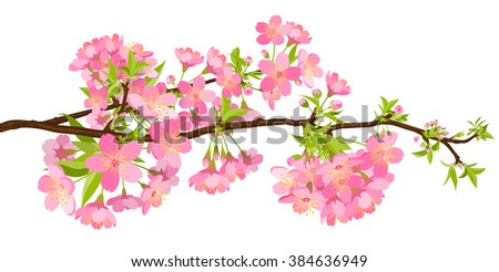 Beautiful Cherry Blossom Branch Panorama - Sakura Flower Beauty Banner. Floral Pink Colored Springtime Illustration - Japanese Traditional Eve - Background Decoration - Greeting Card Decor Template. - stock photo