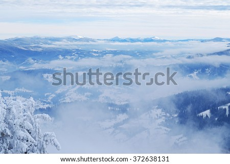 Beautiful Christmas nature background with snowy fir trees and blue mountains in winter. Amazing winter landscape with snow and clouds. Snow covered pine tree forest. Winter panorama. - stock photo