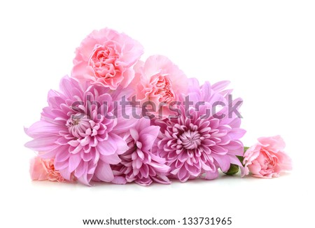 beautiful chrysanthemum and carnation flowers isolated on white - stock photo