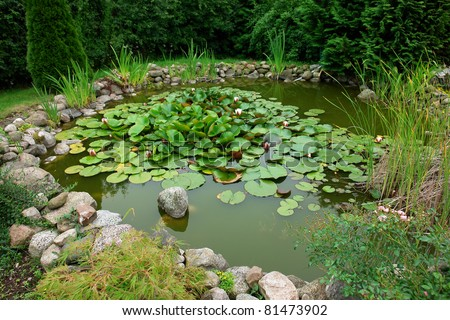 Beautiful classical garden fish pond with blooming water lilies gardening background - stock photo