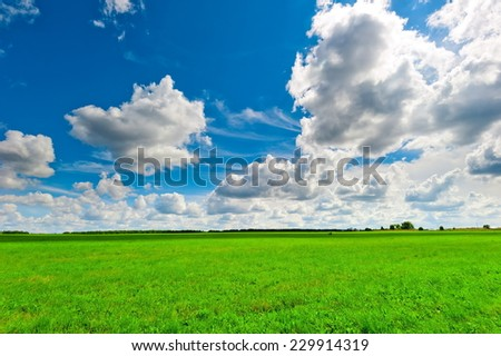 beautiful clouds over the lush green grass - stock photo