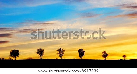 Beautiful cloudy and colored evening sky behind a line of trees