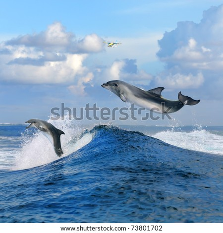 beautiful cloudy seascape in daylight and two happy dolphins jumping out from blue curly breaking surfing wave - stock photo